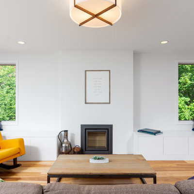 Living room - cottage light wood floor living room idea in Detroit with white walls, a wood stove and no tv