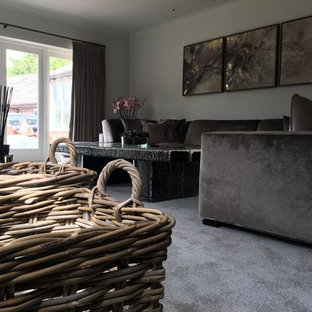 Medium sized contemporary formal enclosed living room in West Midlands with grey walls, carpet, a wood burning stove, a plastered fireplace surround and a freestanding tv.