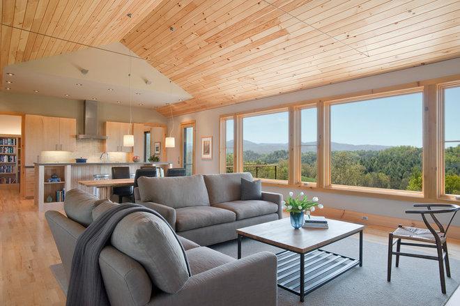 Contemporary Living Room by Alchemy Design Studio