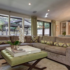 Contemporary Living Room by Rayna Marz Interiors