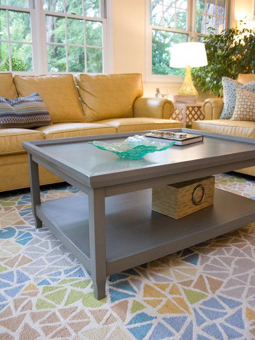 Living Room Design Ideas Renovations Photos With Terracotta Flooring