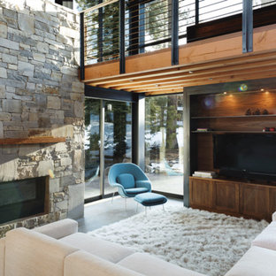 Living room - rustic living room idea in San Francisco with a stone fireplace