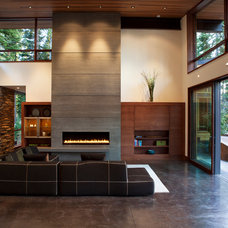 Modern Living Room by Martine Paquin Design