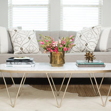 Transitional Living Room by Amanda Carol Interiors