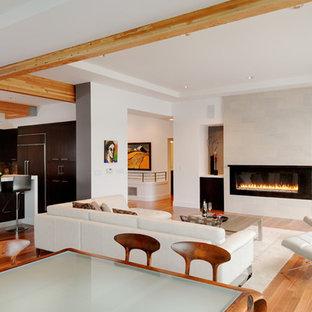 Esempio di un grande soggiorno design aperto con sala formale, pareti bianche, parquet chiaro, camino lineare Ribbon, cornice del camino in metallo e TV autoportante