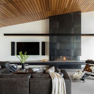Houzz & 75 Beautiful Contemporary Living Room Pictures \u0026 Ideas | Houzz