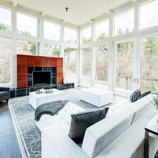 Top 30 Contemporary Living Room Ideas U0026 Designs | Houzz