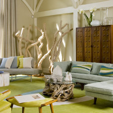 midcentury living room by Amy Lau Design