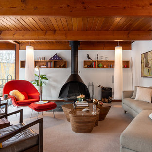 Living room - mid-sized 1950s carpeted and gray floor living room idea in Detroit with white walls and a wood stove