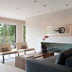 modern living room by Van Sickle Design Consultants Inc