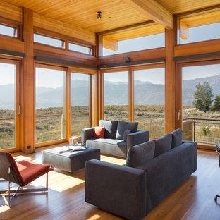 Minimalist open concept medium tone wood floor living room photo in Denver