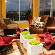 Contemporary Living Room by Tiffany Hanken Design