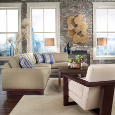 contemporary living room by Thayer Coggin