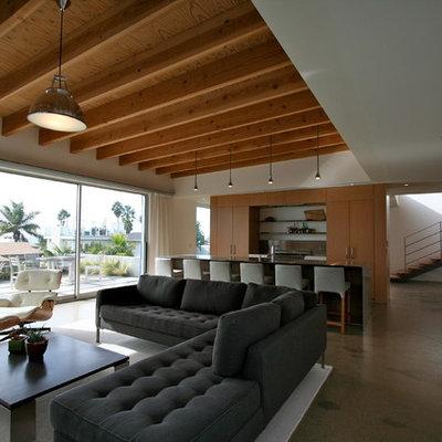 Minimalist open concept concrete floor living room photo in San Diego