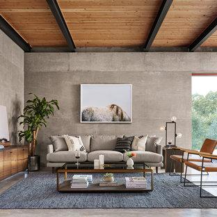 Diseño de salón actual, de tamaño medio, con suelo de cemento, paredes grises y suelo gris