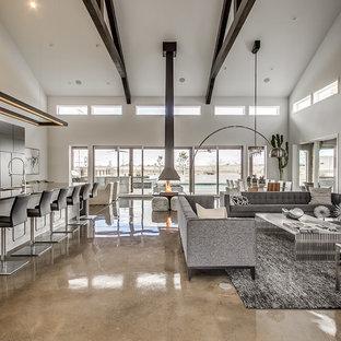 Esempio di un soggiorno minimalista aperto con pareti grigie, pavimento in cemento, camino sospeso e TV a parete
