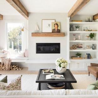 Inspiration for a country formal living room in Minneapolis with white walls, light hardwood floors, a ribbon fireplace, a metal fireplace surround and no tv.