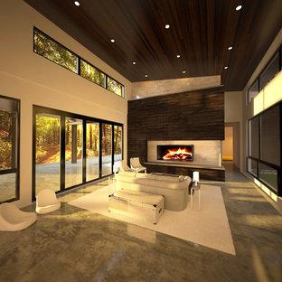他の地域の大きいモダンスタイルのおしゃれなLDK (白い壁、コンクリートの床、両方向型暖炉、埋込式メディアウォール) の写真