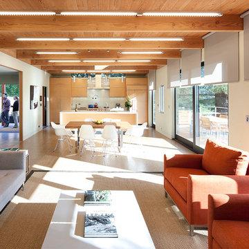 Modern Green Home, Mill Valley, CA