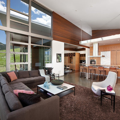 Inspiration for a modern open concept living room remodel in Other