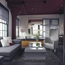 Modern Living Room by Applegate Tran Interiors