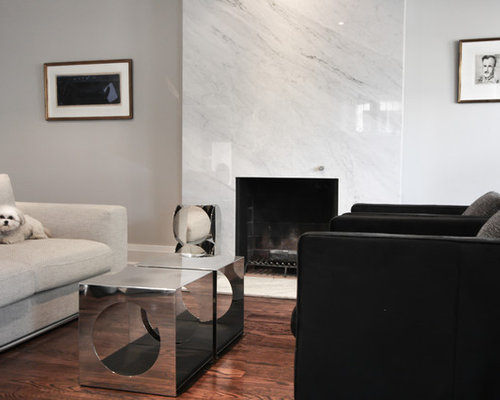 Carrara Marble Fireplace | Houzz