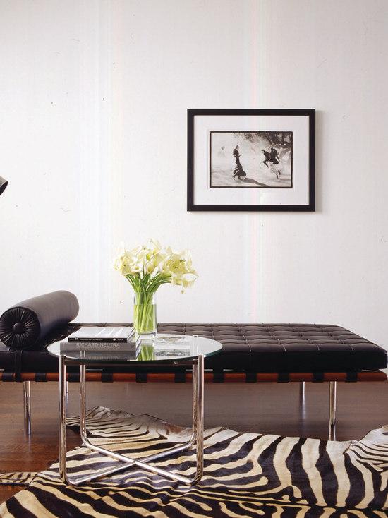 Living Room Zebra Rug zebra rug home design ideas, pictures, remodel and decor