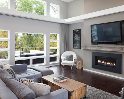 Linear Gas Fireplace Houzz