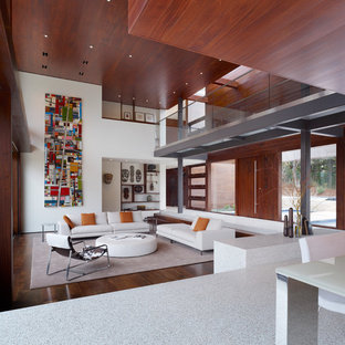This is an example of an expansive modern living room in San Francisco with white walls.