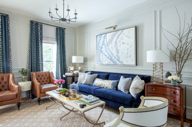 Transitional Living Room by Elizabeth Reich