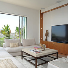 Contemporary Living Room by DTM INTERIORS