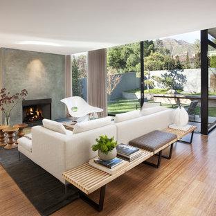 Mid-Century Wohnzimmer mit Kaminumrandung aus Beton und weißer Wandfarbe in Santa Barbara
