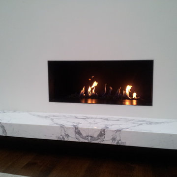 Multiple Fireplace building or repfacing projects