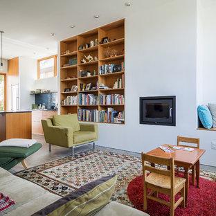 Cette image montre un salon avec une bibliothèque ou un coin lecture minimaliste ouvert avec un mur blanc et une cheminée standard.