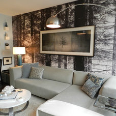 Contemporary Living Room by Frances Bailey