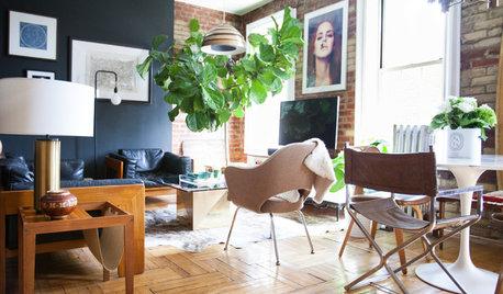 USA Houzz: Gentlemen's Club-Meets-Treehouse in Brooklyn