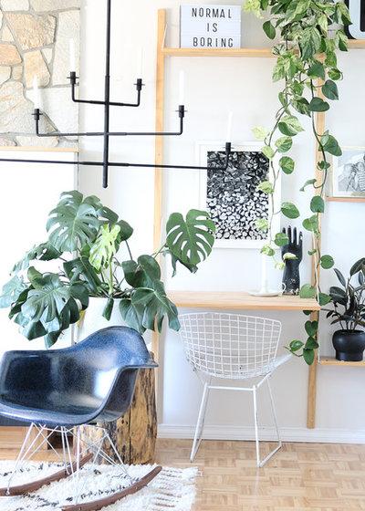Scandinavian Living Room My Houzz