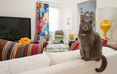 My Houzz: Colors and Patterns Energize a 1950s Ranch