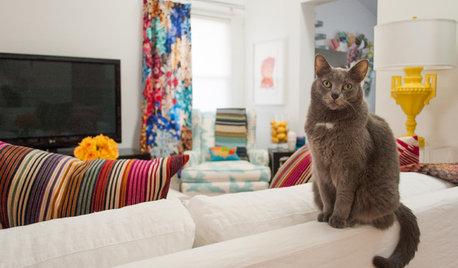 猫と暮らす家100選!