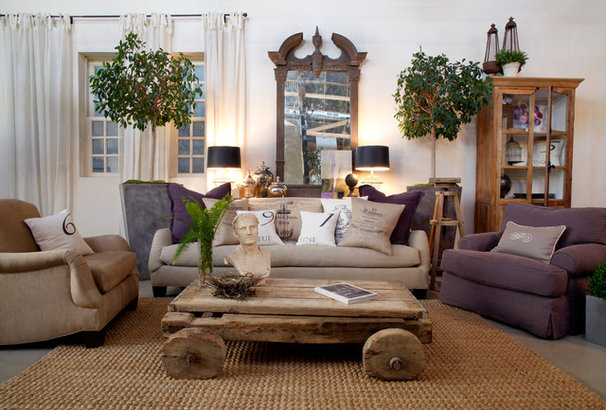 Traditional Living Room by Nan Tofanelli