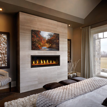 Napoleon Vector LV50 Linear Gas Fireplace