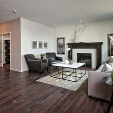 Contemporary Living Room by Albi Homes