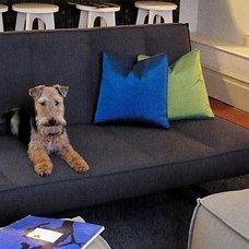 Contemporary Living Room by INSTUDIO