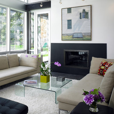 Inspiration for a contemporary living room remodel in Boston with white walls and a standard fireplace