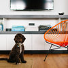 Houzz Tour: Living and Working in Style