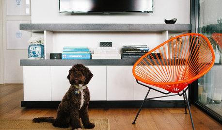 ペットとの暮らしで大切にしたい整理収納ルール
