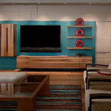 Contemporary Living Room by Linear Fine Woodworking