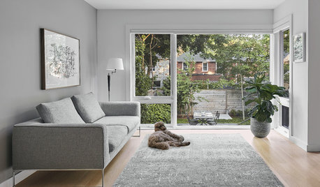 How Do I... Keep My Dog Happy at Home While I'm at Work?
