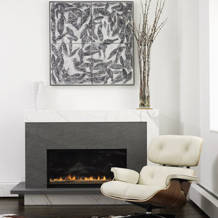 Trendy living room photo in New York with white walls and a ribbon fireplace