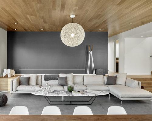 modern living room design ideas, remodels & photos | houzz